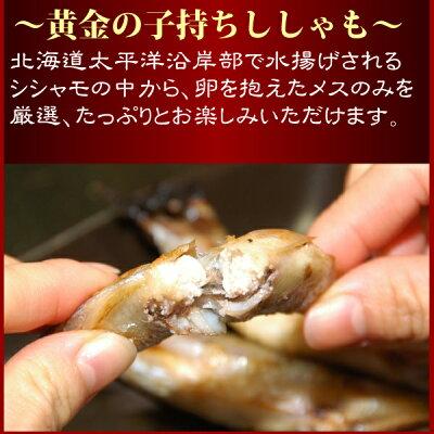 『子持ち本シシャモ10尾パック』(北海道産:子持ちメスMサイズ)【SS10P02dec12】