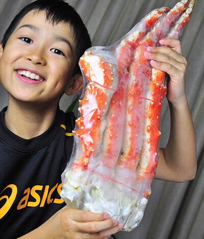 【送料無料】【年越し】【お歳暮】『超特大ボイル本タラバ蟹』(身入り超特撰6L1肩1.3kg脚)【ギフト】【楽ギフ_包装】