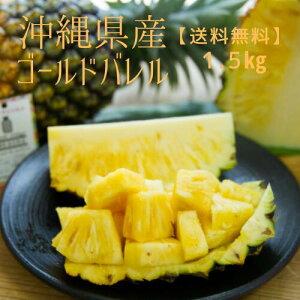 沖縄県産パイン ゴールドバレル 1.5 kg 1玉入 送料込 送料無料 産地直送 パインアップル パイン 沖縄