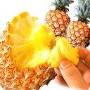 【送料無料】沖縄県産 スナックパイン 2kg[2〜4個入]産地直送  ちぎって食べる ボゴールパイン パインアップル パイン…