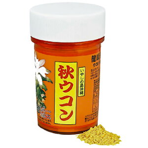 比嘉製茶 秋ウコン粉 100gクルクミン||[健康食品>サプリメント>ウコン]