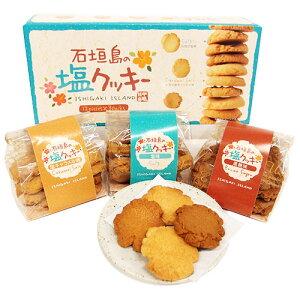 石垣島の塩クッキー 36個入ミネラル|沖縄土産|石垣の塩|人気[食べ物>お菓子>クッキー]【6_1ss】