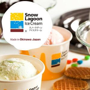 【送料無料】Snow Lagoon Ice Cream OKINAWAバラエティパック6個入り【アイスクリーム】|アイスクリーム|ジェラート|贈り物[食べ物>スイーツ・ジャム>アイスクリーム] お歳暮 御歳暮 お