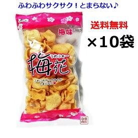 せんべい【梅花(うめふぁー)】70g×10袋セット / 塩せんべい 亀せんべいの老舗 沖縄 玉木製菓