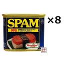 スパム 減塩 SPAMポーク 340g×8缶セット / 沖縄ポークランチョンミート 缶詰