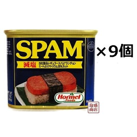 【 SPAM 】スパム 減塩 340g×9缶セット / 沖縄 ポーク 缶詰