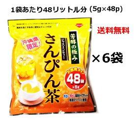 さんぴん茶 ティーパック 芳醇の極み (5g×48p)×6袋セット  沖縄限定 お徳用 ティーバッグ