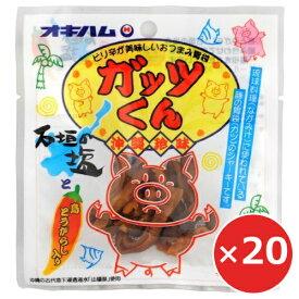 ジャーキー おつまみ 沖縄 オキハム 豚 ガッツくん 15g×20個