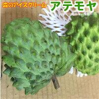 【発送9月、2〜3月年2回】フルーツなのにバニラアイスに似た甘さアテモヤ1kg