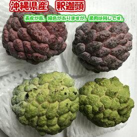 釈迦頭 1kg(4〜8個)沖縄県産 シュガーアップル バンレイシ【発送12〜5月 希少フルーツにつきお待たせすることあり】