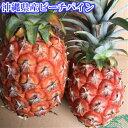 ピーチパイン約3kg 【発送5月上旬〜6月】 沖縄産【父の日 ギフト】 【国産 沖縄県産 果物 パイナップル パインアップ…