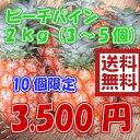 【週末セール】ピーチパイン約2kg (4〜7玉) 送料無料