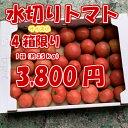 【在庫処分4個だけ】真和志産 水切りトマト 1箱(Sサイズ約3.5kg)