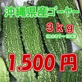 【週末セール・7割引】沖縄県産 ゴーヤー(苦瓜・にがうり) 3kg【30個限り】