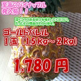 【週末セール・10個だけ】ゴールドバレル 1玉(約1.5〜2kg)