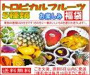 【送料無料】お任せフルーツ5種類 トロピカルフルーツ お楽しみ福袋5000円コース(フルーツセット 沖縄果物 マンゴー …