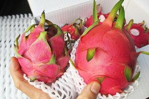 ドラゴンフルーツ☆ ピンク ☆実際の色味は白に近い薄いピンク色になります。☆ 優品 約1kg 発送7月下旬〜12月 沖縄産 ピタヤ ピタヤボウル スーパーフード お取り寄せ スムージー 食物繊維