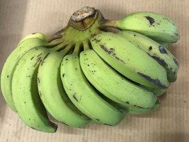 バナナ「ゴールデンスイートバナナ」約2kg 【発送7月〜11月】 沖縄県産