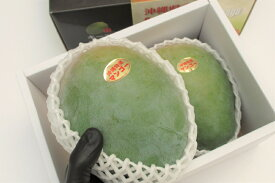 マンゴー キーツ 優品 約1.5kg 沖縄県産 ☆ 送料無料 発送8月中旬〜9月中旬