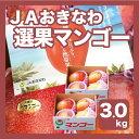 【週末お買い得セール】【豊作価格!!】【送料無料】【JAおきなわ選果マンゴー】沖縄産完熟マンゴー約3kg(1.5kg前後…
