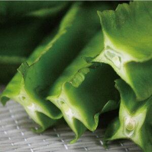 うりずん豆(四角豆) 1パック(100g) 【発送4月〜12月】四方についたひだが特徴 沖縄産  沖縄で盛んに栽培されている南国野菜