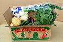 沖縄の野菜13種セット 【定期お届け承ります】 【国産 国内産 沖縄県産 野菜 詰め合わせ 野菜セット お取り寄せ】【た…