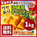 【発送8月中旬〜9月中旬】【送料無料】【訳あり】沖縄産 幻のキーツマンゴー 約1kg流通量が少なく「幻のマンゴー」と…