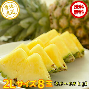 沖縄県産 ボゴールパイン 2L 8玉送料無料 産地直送 沖縄 パイナップル スナックパイン フルーツ 手でちぎれるパイン 今が旬 期間限定