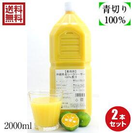 沖縄県産100%シークヮーサー果汁2L×2本セット ノビレチン豊富 無添加果汁100% シークワーサー原液 業務用サイズ