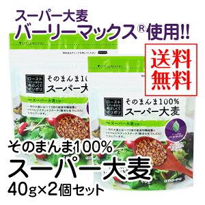 そのまんま100%スーパー大麦(40g)×2個セット【送料無料】【水溶性食物繊維 β-グルカン レジスタントスターチ フルクタン】※ポスト投函型発送となります。