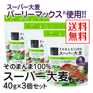 そのまんま100%スーパー大麦(40g)×3個セット【送料無料】【水溶性食物繊維 β-グルカン レジスタントスターチ フルクタン】※ポスト投函型発送となります。
