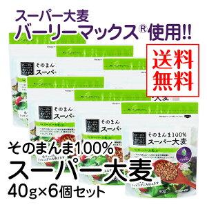 そのまんま100%スーパー大麦(40g)×6個セット【送料無料】【水溶性食物繊維 β-グルカン レジスタントスターチ フルクタン】※ポスト投函型発送となります。