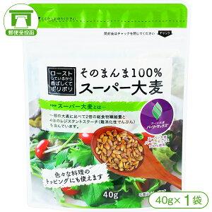 【スーパー大麦[バーリーマックス]】そのまんま100%スーパー大麦(40g)×1袋【水溶性食物繊維 β-グルカン レジスタントスターチ フルクタン】