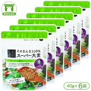 【スーパー大麦[バーリーマックス]】そのまんま100%スーパー大麦(40g)×6袋【水溶性食物繊維 β-グルカン レジスタントスターチ フルクタン】