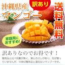 【送料無料】【予約販売】沖縄県産訳ありマンゴー約1.5kg(3〜6玉)【沖縄 マンゴー アップルマンゴー アーウィン 果物 やんばる】