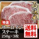 Ishgakigyu04