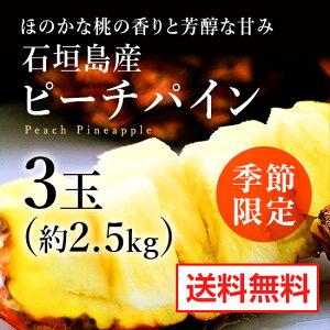 ピーチパイン(約2.5kg)3玉【石垣島産】【予約販売】【送料無料】※5月上旬〜6月下旬の発送になります。【ピーチパイン パイナップル パインアップル パイン 沖縄 果物 石垣島 お中元 ギフ
