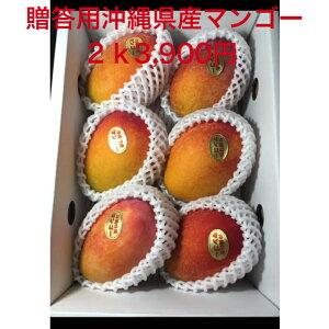 沖縄県産 完熟マンゴー 2K 3,900円