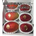 沖縄県産完熟マンゴー 2K全国一律送料込み3,900円
