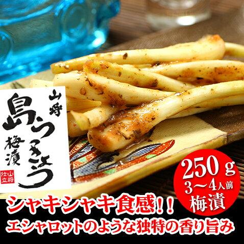島らっきょう 塩漬け 梅漬 250g 沖縄 沖縄お土産 おつまみ ご飯のお供 ランキング オススメ
