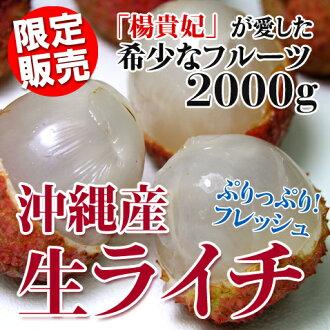 冲绳产生鲜荔枝 (荔枝太多了 ! 我可以引用:) 2 千克左右新鲜水果