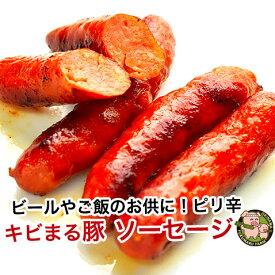 沖縄 きびまる豚 冷凍 ソーセージ バーベキュー 肉 BBQ 【チョリソー/20g×6本入】