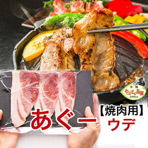 あぐー豚 アグー豚 豚肉 沖縄 ギフト ウデ スライス 焼肉セット 【500g 2〜3人前/100g×5個】