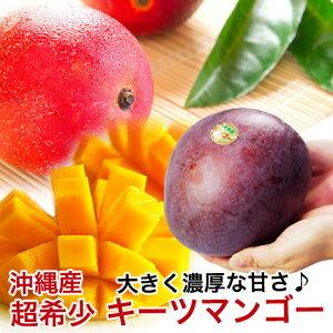 マンゴー レッドキーツ 沖縄 キーツマンゴー 赤 沖縄マンゴー 【700g〜1kg】