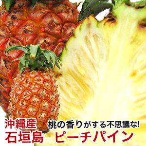 ピーチパイン 沖縄 石垣島産 パイナップル 沖縄パイナップル お取り寄せ デザート 高級 500g〜800g 【安心保証付き】
