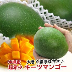 キーツマンゴー 沖縄 マンゴー 大玉 沖縄マンゴー 【600g〜800g】