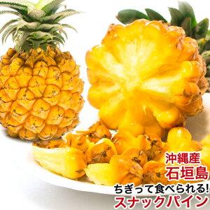 スナックパイン パイナップル 沖縄 石垣島産 お取り寄せ デザート 高級 500g〜800g 【安心保証付き】