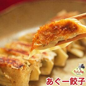 沖縄 アグー豚 あぐー豚 餃子 ぎょうざ お取り寄せ 芸能人 グルメ 肉 【12個入り】