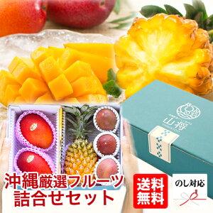 フルーツ 詰め合わせ ギフト セット 高級 沖縄産 【でーだかー】