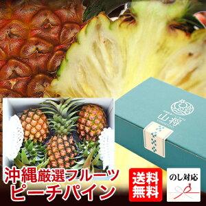 ピーチパイン パイナップル 沖縄 石垣島 パイナップル ギフト 3玉セット【安心保証付き】